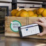 IBM con i big del settore food in un consorzio per la blockchain per la sicurezza alimentare