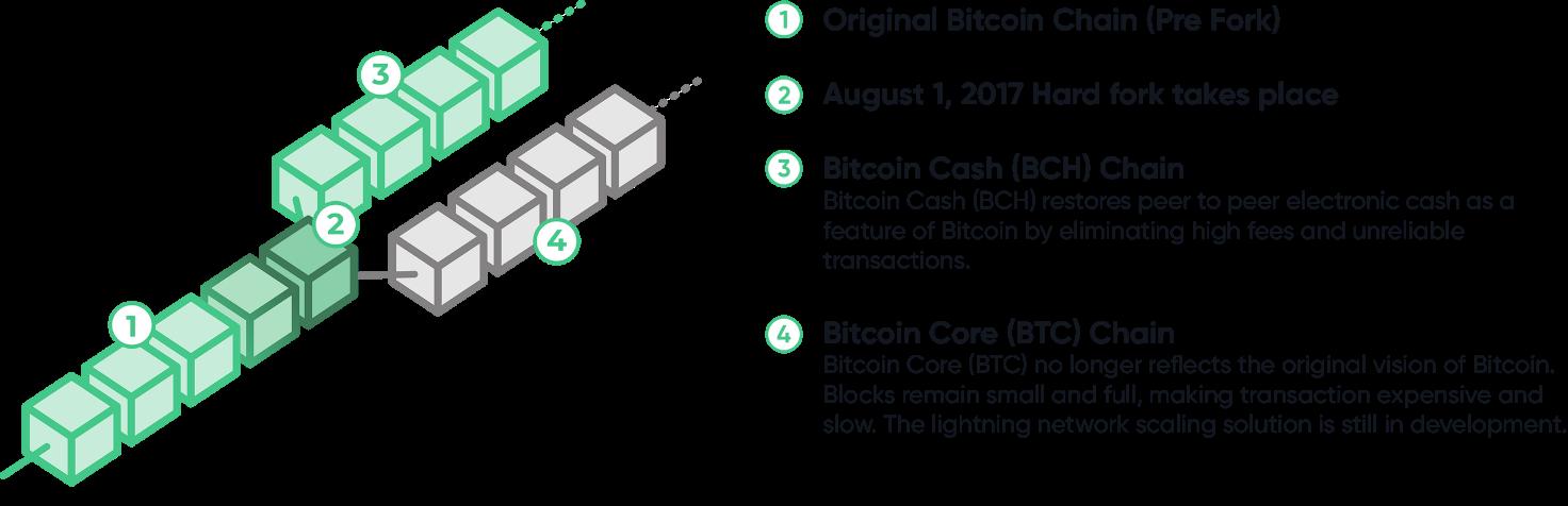 Bitcoin cash schema